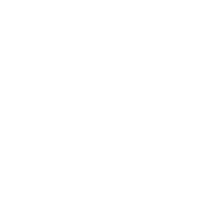 National Veterans Business Development Council logo